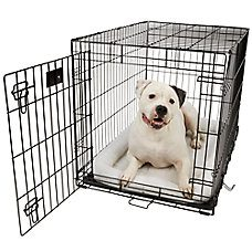 How To Crate Train Your Dog While At Work
